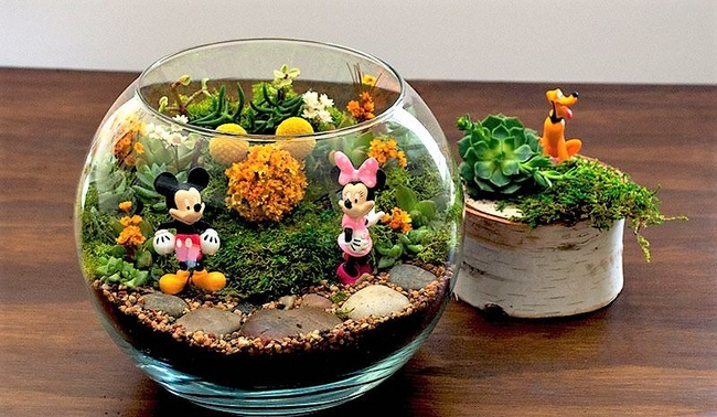 Charming DIY Ideas for Succulent Terrariums