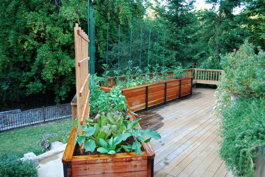 raised garden bed ideas 31