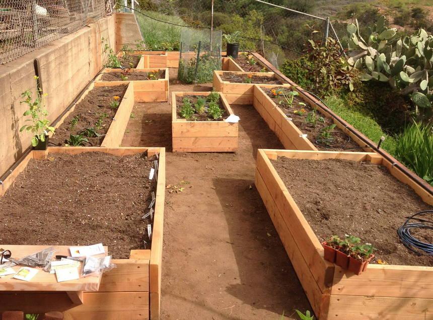 raised garden bed ideas 38