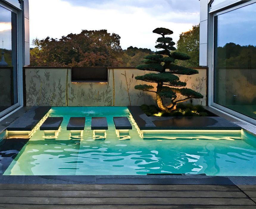 rooftop pool (9)
