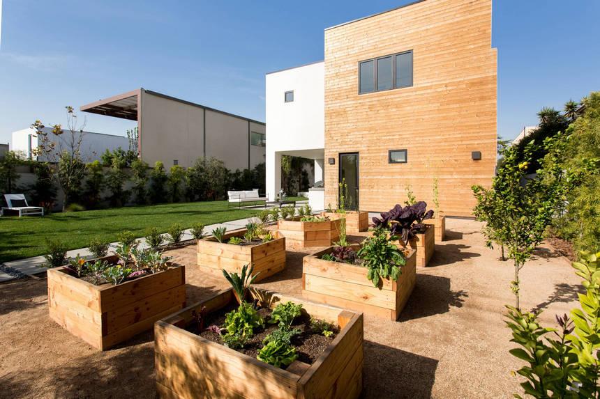 Container Gardening Ideas (2)