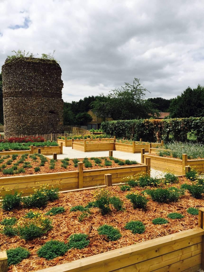 Container Gardening Ideas (20)