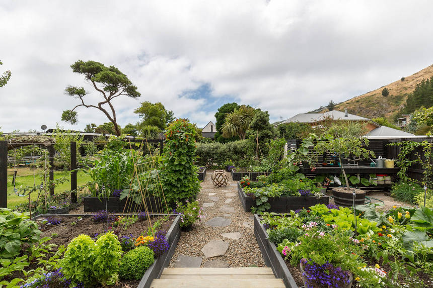 Container Gardening Ideas (23)