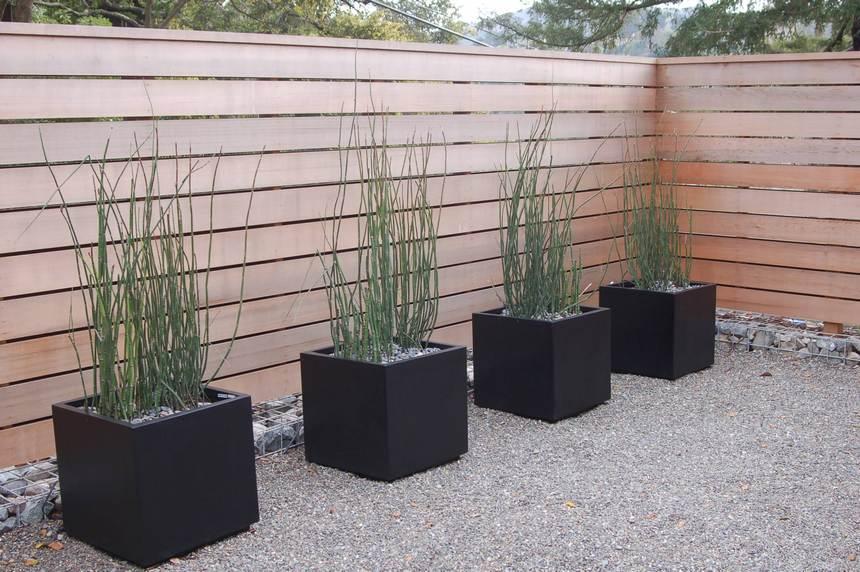 Container Gardening Ideas (47)
