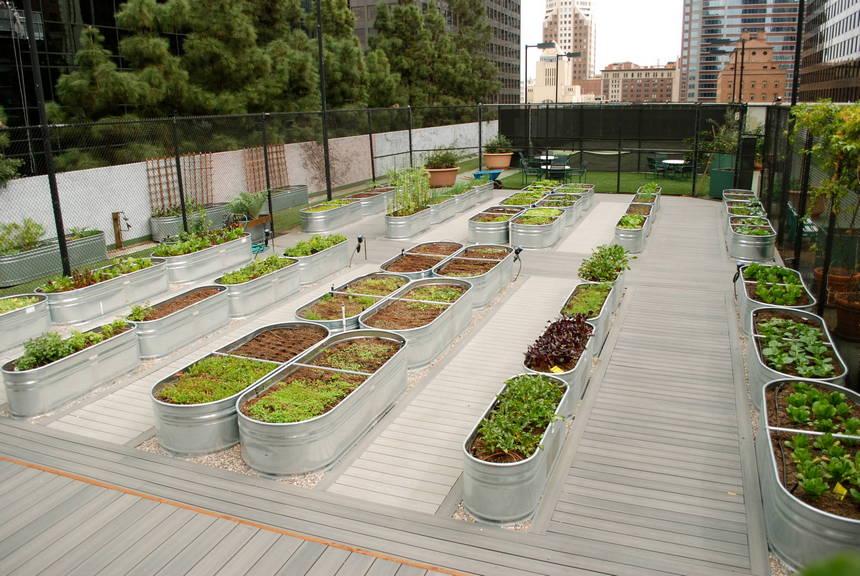 Container Gardening Ideas (6)
