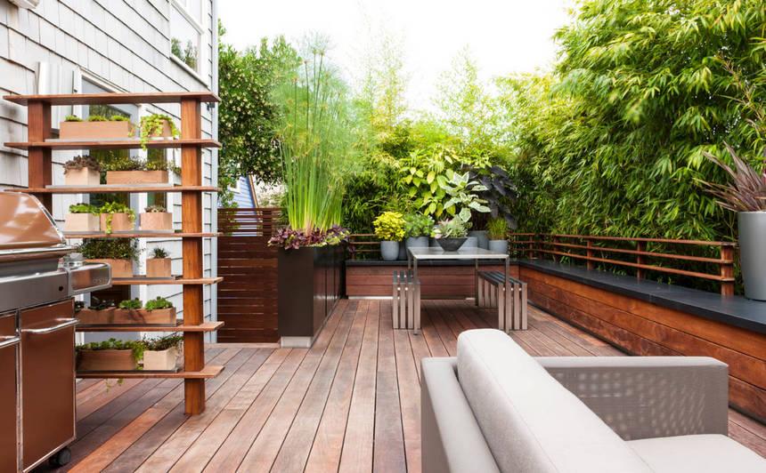 Container Gardening Ideas (7)