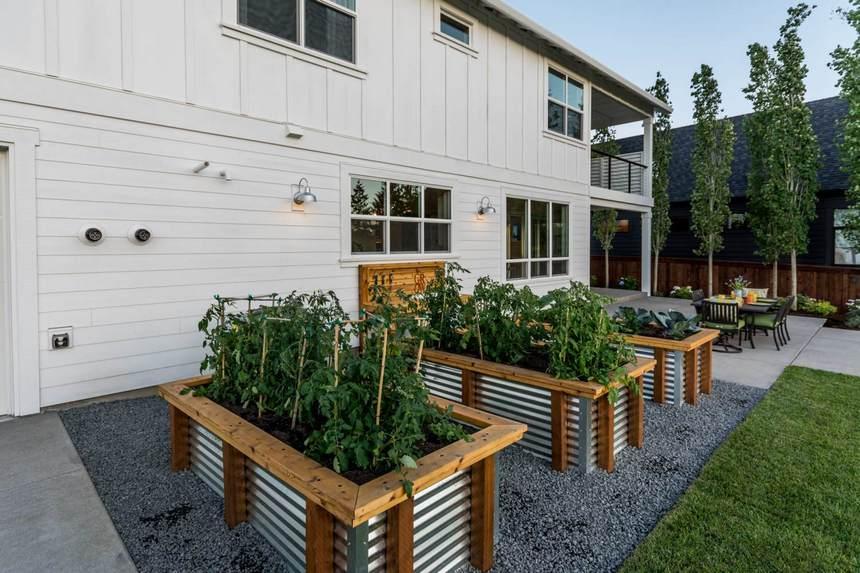 Container Gardening Ideas (8)